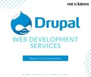 Get Professional Drupal Website Development Services