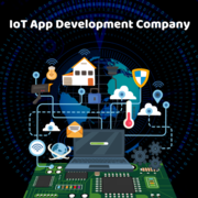 Beyond Root – The best IoT app development company to count on