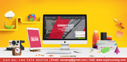 Freelance WordPress Web Design /Small Business Web Design and Developm