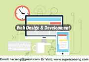 Professional Website Mobile & Web App Design eCommerce CMS Software